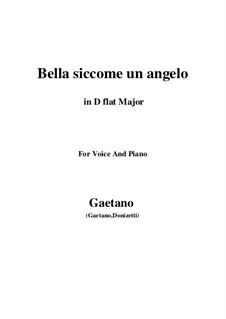 Don Pasquale: Bella siccome un angelo (D flat Major) by Gaetano Donizetti