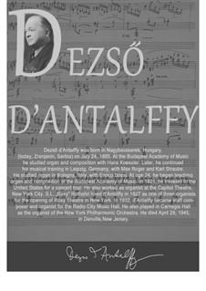 A Hungarian Rhapsody: A Hungarian Rhapsody by Dezső Antalffy-Zsiross