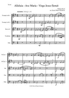 Alleluia - Ave Maria - Virga Jesse floruit: Para quinteto de metais by William Byrd