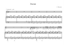 Элегия: Элегия by Svetlana Shwezowa