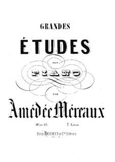 Grandes études pour piano en soixante caprices caractéristiques, Op.63: estudos No 1-12 by Amédée Méreaux