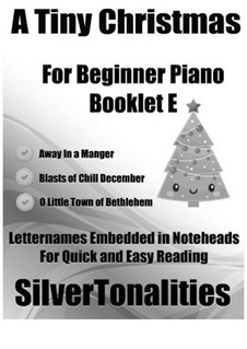 A Tiny Christmas for Beginner Piano Booklet E: A Tiny Christmas for Beginner Piano Booklet E by folklore