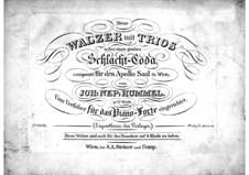 New Waltzes, Op.91: Para Piano by Johann Nepomuk Hummel