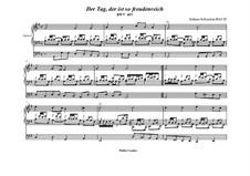 Der Tag, der ist so freudenreich, BWV 605: Für Orgel by Johann Sebastian Bach