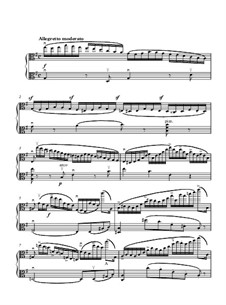 Eight Etudes for Two Violins, Op.18: Etude No.3. Version for viola by Henryk Wieniawski