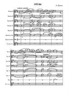 No.7 Träumerei (Dreaming): para grande conjunto by Robert Schumann