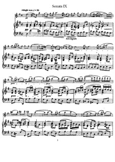 Sonata No.9 : Versão para flauta e piano, parte solo by Johann Mattheson
