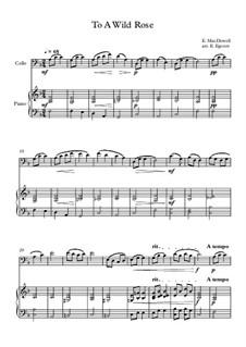 10 Easy Classical Pieces For Cello & Piano Vol.3: To A Wild Rose by Edward MacDowell, Johann Strauss (Sohn), Johannes Brahms, Georg Friedrich Händel, Felix Mendelssohn-Bartholdy, Robert Schumann, Muzio Clementi, Giuseppe Verdi, Anton Rubinstein, Johan Halvorsen