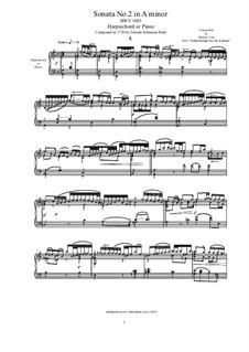Sonata for Violin No.2 in A Minor, BWV 1003: Arrangement for harpsichord or piano by Johann Sebastian Bach