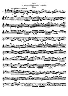 Thirty Etudes for Flute, Op.75: livro II by Ernesto Köhler