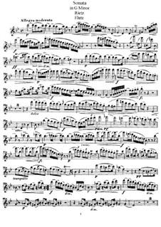 Sonata in G Minor for Flute and Piano, Op.42: Parte de solo by Julius Rietz