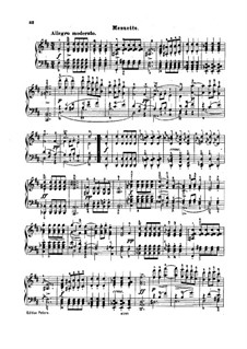 Sonata for Piano No.18 in G Major, D.894 Op.78: Movimentos III-IV by Franz Schubert