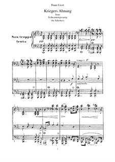 Swan Song. Warrior's Foreboding. Transcription on a Theme by Schubert, S.560 No.2: Swan Song. Warrior's Foreboding. Transcription on a Theme by Schubert by Franz Liszt