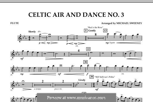 Celtic Air and Dance No.3: parte flauta by folklore