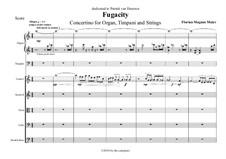 Fugacity: Fugacity by Florian Magnus Maier