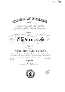 Flora d'Italia, Op.146: livro II by Mauro Giuliani
