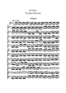 St John Passion, BWV 245: violino parte I by Johann Sebastian Bach