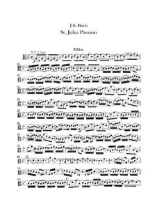 St John Passion, BWV 245: parte viola by Johann Sebastian Bach