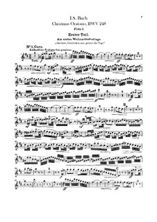Weihnachts-Oratorium (The Christmas Oratorio), BWV 248: flautas  by Johann Sebastian Bach