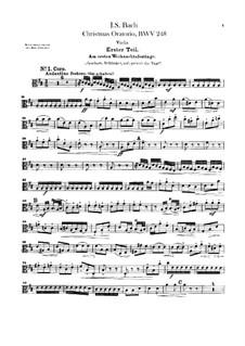 Weihnachts-Oratorium (The Christmas Oratorio), BWV 248: parte viola by Johann Sebastian Bach