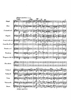 Complete Concerto: Partitura completa by Frédéric Chopin