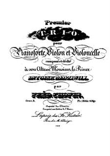 Piano Trio in G Minor, Op.8: parte piano by Frédéric Chopin