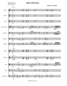 Mecuppatea: For small orchestra by Sandro G. Masoni