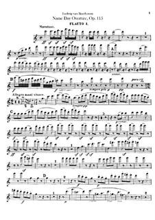 An Minna, WoO 115: flautas  by Ludwig van Beethoven