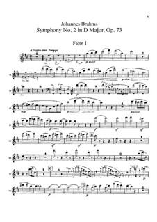 Complete set: parte de flautas by Johannes Brahms