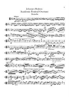 Academic Festival Overture, Op.80: parte viola by Johannes Brahms