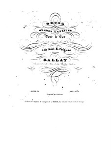 Twelve Grand Caprices for French Horn, Op.32: Twelve Grand Caprices for French Horn by Jacques François Gallay