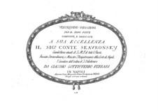 Twenty-Four Variations for Piano: Twenty-Four Variations for Piano by Giacomo Gotifredo Ferrari