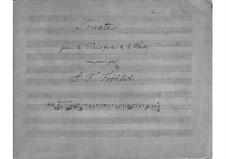 Sonata for Flute and Piano in A Minor: Sonata for Flute and Piano in A Minor by Johannes Frederik Frøhlich