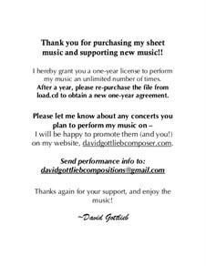 Etude No.1 for Solo Guitar: Etude No.1 for Solo Guitar by David Gottlieb