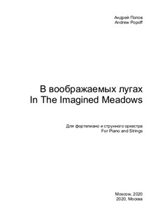 In The Imagined Meadows: In The Imagined Meadows by Andrey Popov