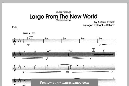 Movement II (Largo) Printable Scores: For winds - Flute part by Antonín Dvořák