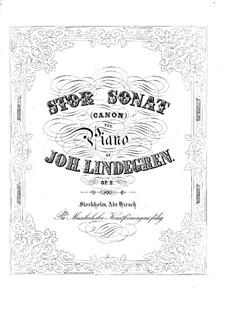 Sonata in B Minor for Piano, Op.2: Sonata in B Minor for Piano by Johan Lindegren
