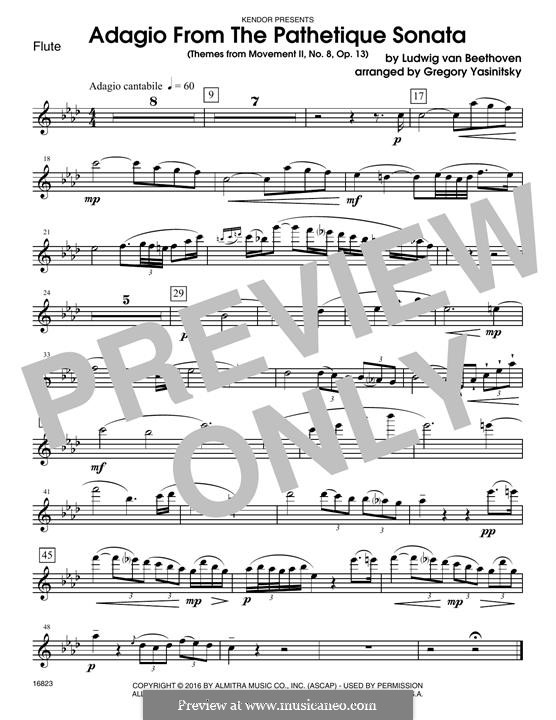 Movement II (Printable scores): Themes, for winds - flute part by Ludwig van Beethoven