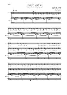Magdana's Donkey, Op.2001: Magdana's Donkey by Nino Janjgava