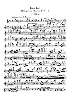 No.14 in F Minor, for Orchestra, S.359/1: parte de flautas by Franz Liszt