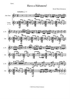 Have a Habanera: For alto-flute and guitar by David W Solomons