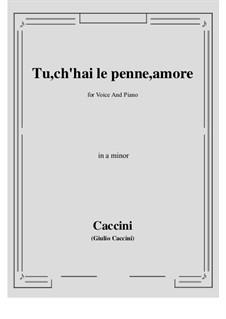 Tu, ch'hai le penne, Amore: A minor by Giulio Caccini