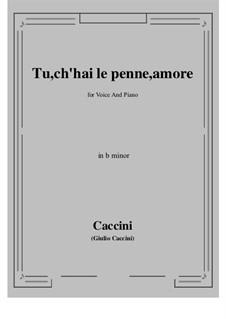 Tu, ch'hai le penne, Amore: B minor by Giulio Caccini