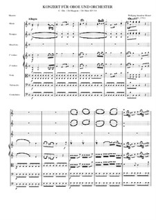 Concerto for Flute and Orchestra No.2 in D Major, K.314: Movement I by Wolfgang Amadeus Mozart