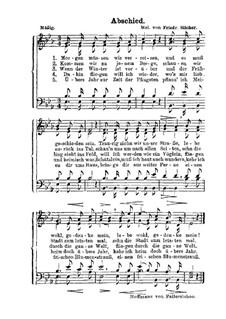 Morgen müssen wir verreisen: para coro misto by Friedrich Silcher