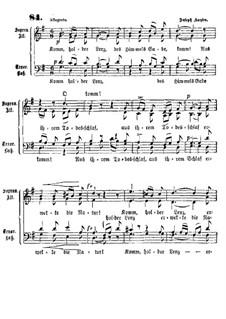 Komm holder Lenz: Komm holder Lenz by Joseph Haydn