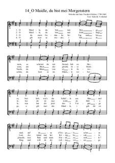 O Maidle, du bist mei Morgenstern: para coral masculino by Friedrich Silcher