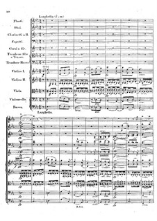 Symphony No.1 in B Flat Major 'Spring', Op.38: movimento II by Robert Schumann