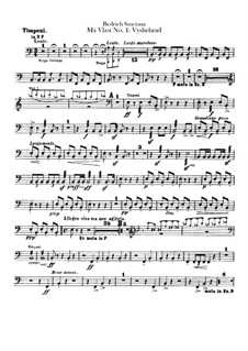 Vyšehrad, T.110: Parte percussão by Bedřich Smetana