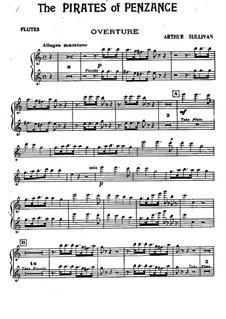 Complete Opera: parte flauta by Arthur Seymour Sullivan